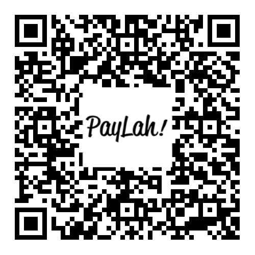 DBS Paylah QR Code